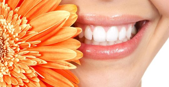 Spring Cleaning: Oral Health Edition